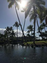 ハワイ島 1日目 - piecing・針仕事と庭仕事の日々