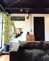 Calm sofa - hiro furniture