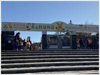 愛知県でのお出かけその5  東山動物園(11月29日)やっぱりシャバーニに会わなくっちゃね - さくらおばちゃんの趣味悠遊