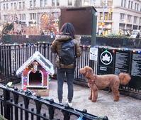 年の瀬のマディソン・スクエア・パークの様子 - ニューヨークの遊び方