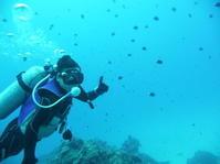 良いとこどり~糸満近海ガイド付きボートダイビング(ファンダイビング)~ - 大度海岸(ジョン万ビーチ・大度浜海岸)と糸満でのシュノーケリング・ダイビングなら「海の遊び処 なかゆくい」