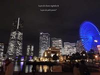 年末の東京出張。 - 言衣りごと・暮らしごと。