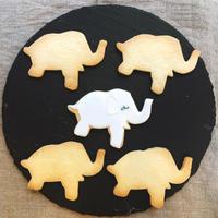 オツベルと象の白象 - 調布の小さな手作りお菓子教室 アトリエタルトタタン