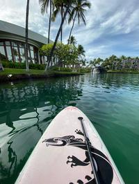 ハワイ島 4日目 - piecing・針仕事と庭仕事の日々