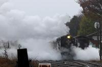 白い蒸気をかき分けて黒い機関車が迫る- 2019年・真岡重連 - - ねこの撮った汽車