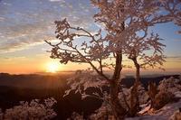 富士山の見える夜明け弥山 - 峰さんの山あるき