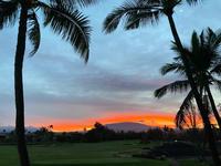 ハワイ島 最後の朝 - piecing・針仕事と庭仕事の日々