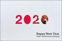 Wishing you a joyous New Year! - すずちゃんのカメラ!かめら!camera!