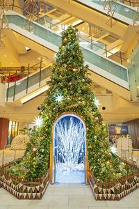 横浜のクリスマス - エーデルワイスPhoto