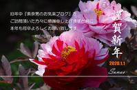大晦日の夜、そして元日の朝へ! - 素奈男のお気楽ブログ