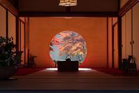 北鎌倉の紅葉2019明月院長寿寺円覚寺 - エーデルワイスPhoto