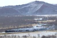 湿原を汽車が通る- 2019年・釧網線 - - ねこの撮った汽車