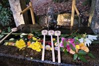 日吉大社に参詣(4)花で飾られた石造りの手水舎~花手水~ - たんぶーらんの戯言