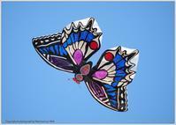 凧揚げ正月凧 - 野鳥の素顔 <野鳥と日々の出来事>