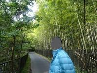 京都の秋2019(5) - 嵐山エリア散策その2西芳寺 - Pockieのホテル宿フェチお気楽日記III