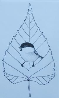 『#木の葉絵#leafart 』白樺・小雀 - スケッチ感察ノート (Nature journal)