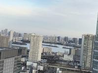 【お台場ビュー】 - お散歩アルバム・・静かな睦月