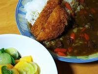 柿サラダと勝カレー - 「 ボ ♪ ボ ♪ 僕らは釣れない中年団 ♪ 」Ver.1