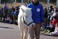 新春!動物パレード2020(埼玉県こども動物自然公園)その2 - 続々・動物園ありマス。