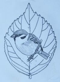 『#木の葉絵#leafart 』 山桜桃梅・雀 - スケッチ感察ノート (Nature journal)