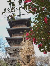 備中国分寺岡山県 - ty4834 四季の写真Ⅱ