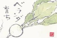 菘(すずな)「七草粥で朝ごはん」 - ムッチャンの絵手紙日記