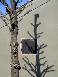 冬樹 - 四十八茶百鼠(2)