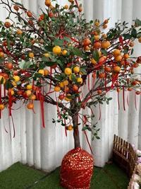 旧正月のお飾りとChinese Dress - madameHのバラ色の人生