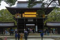 初詣 & 諸々・・・1月7日(火)6787 - from our Diary. MASH  「写真は楽しく!」