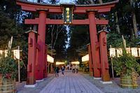 初詣(弥彦神社) - くろちゃんの写真