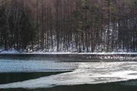 冬の御射鹿池 - 空 -Sora-