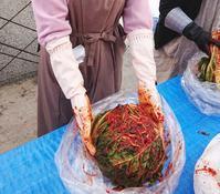 キムジャン(白菜キムチの漬け込み) - 登志子のキッチン