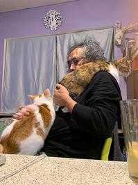 人気スポット - ぶつぶつ独り言2(うちの猫ら2021)