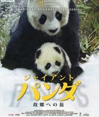 「ジャイアントパンダ故郷への旅」 - 山とPANDA