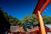 熊野那智大社 - toshi の ならはまほろば