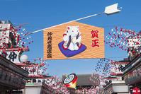 浅草・浅草寺仲見世通リの正月飾り - エーデルワイスPhoto
