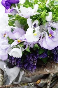 こいつぁ~春から♪ - お花に囲まれて
