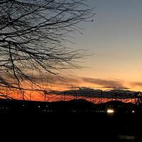 今年初めての定点観察「また、美しい空・雲・月・夕焼けなど・・・」 - ドライフラワーギャラリー⁂ふくことカフェ
