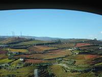 ドウロ渓谷のドライブ ①(ポルトガル旅行記) - journeydelicious's Blog