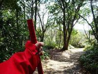 森林セラピー 無になる - NATURALLY