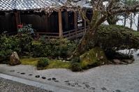 西教寺・書院庭園@滋賀県・坂本 - たんぶーらんの戯言