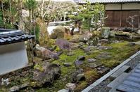西教寺・大本坊庭園@滋賀県・坂本 - たんぶーらんの戯言