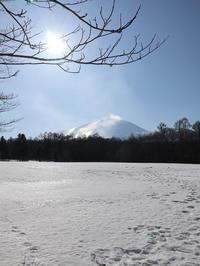 雪国でコンニャク作って身も心も温まる~ - 飯沢康輔ブログ Art&Whisky