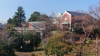 1月の港の見える丘公園 - 大佛次郎記念館NEWS