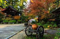 紅葉が彩る滋賀2019長寿寺・秋景 - 花景色-K.W.C. PhotoBlog