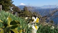 雪化粧した綺麗な富士山 - バイク玉手箱