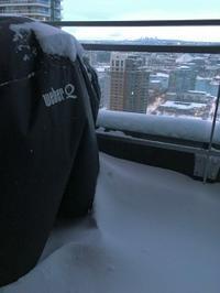 シーウォールの雪景色② - Prairie Life