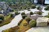 西教寺・裏書院庭園 @滋賀県・坂本 - たんぶーらんの戯言
