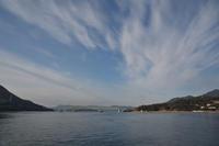 三津浜港から柳井港へ - かたくち鰯の写真日記2