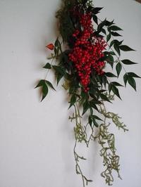 赤い実 - 植物樹木と私の暮らし